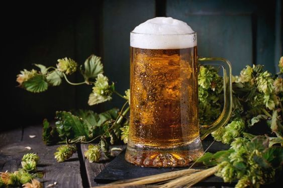 Which classic beer mug do you use?cid=3