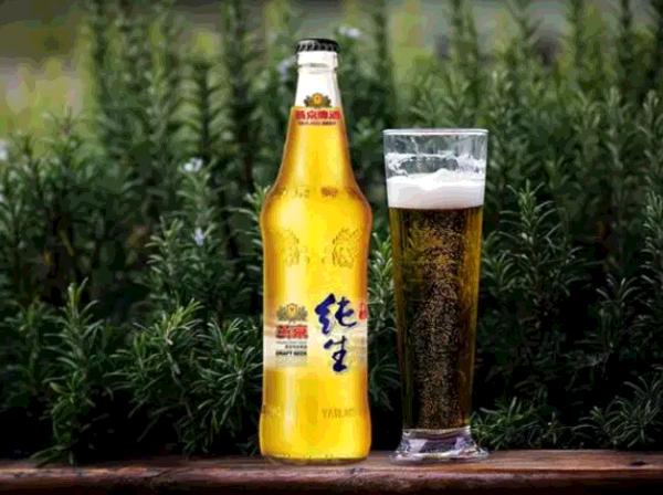 Pilsner beer Cup