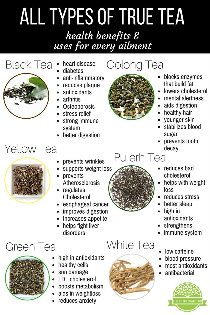 Everything You Need to Know about Tea, Explained
