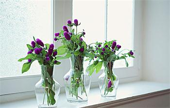 The important factor in choosing a vase and vase collocation tips