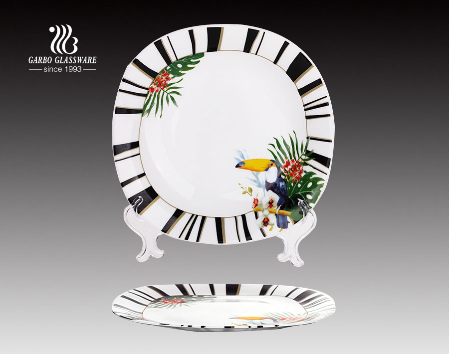 10.5 Inches Dinnerware Microwave Dinner Opal Glass Plate