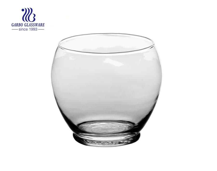 Decorative Glass Bottle Vase Flower Display
